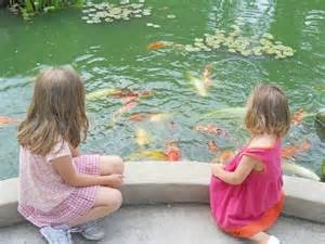 girls feeding pond fish