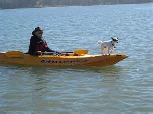 travel with dogs to kayak